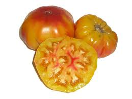 Tomate german striped