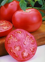 Tomate Summerpink VF